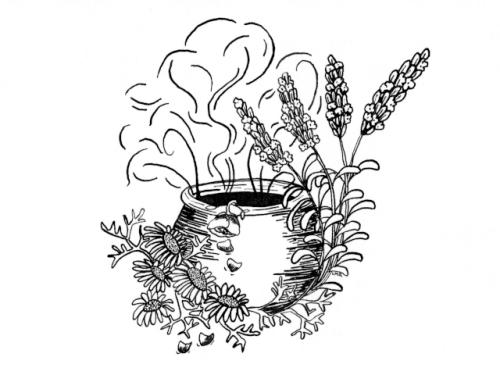 lavendarsite.jpg